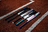 Rawlings 2020 Ombre Fastpitch Softball Bat, 30 inch (-11), Pink, Purple, Teal, White