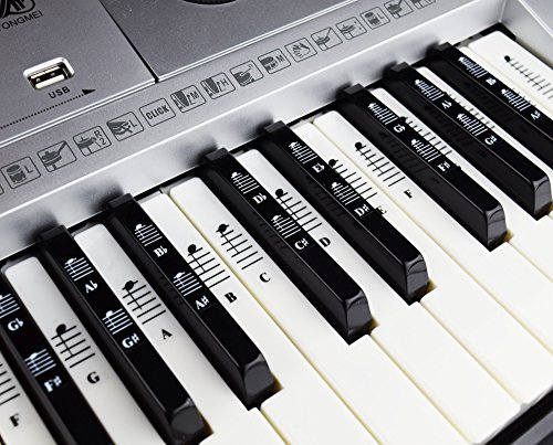 The 8 best keyboard piano for learning