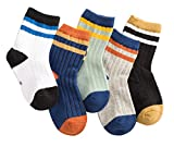 PenGreat Little Boys Toddler Crew Stripes Printed Cotton Socks 5 Pack