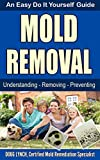 Mold Removal: An Easy Do It Yourself Guide