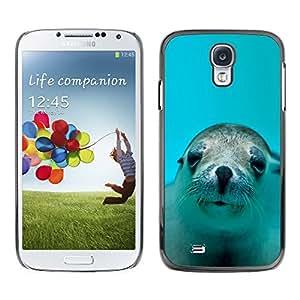 Stuss Case / Funda Carcasa protectora - LINDO FELIZ LEÓN DE MAR DEL PERRO - Samsung Galaxy S4