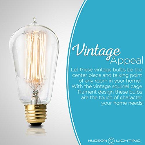 Antique Vintage Edison Bulb 4 Pack 60 Watt Hudson
