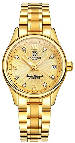 Ladies Automatic Diamond Watch - Carnival Stainless Steel Automatic Diamond Waterproof Synthetic sapphire Ladies Watches