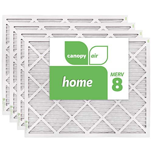 Canopy Air 20x25x1 Protection Healthy