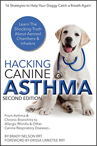 Can You Catch Bronchitis From A Dog