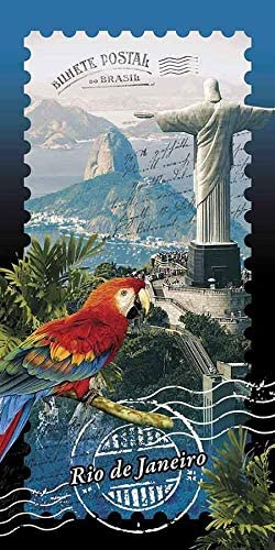 "30/"" x 60/"" Velour Flamingos /& Lake Beach Towel Made In Brazil"