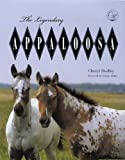 The Legendary Appaloosa