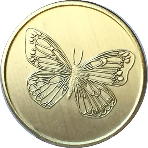 Butterfly with Serenity Prayer- Bronze Medallion -
