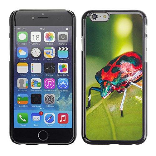 "Premio Sottile Slim Cassa Custodia Case Cover Shell // F00013704 scarabée // Apple iPhone 6 6S 6G PLUS 5.5"""