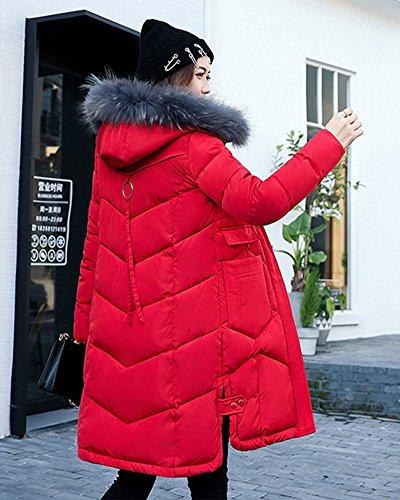 Cappotto Incappucciati Womens Rossa Sentire Del Cotone Grande Vestiti Giù Giacca Long Bavero IwwnHRzq