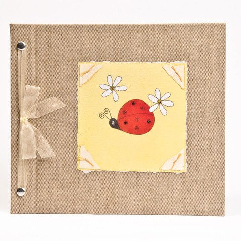 Hugs and Kisses XO Baby Memory Book: Ladybug Girl Baby Album from Birth to 5 Years 51uAHRu9V2L