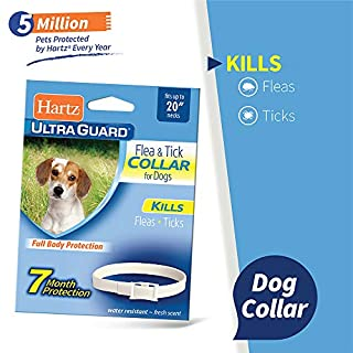"""Hartz UltraGuard Flea & Tick Collar for Dogs and Puppies - 20"""" Neck, 7 Month Protection"""