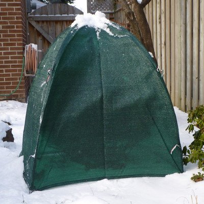 nuvue-products-20254-winter-shrub-cover-hunter-green-40-inch
