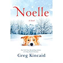 Noelle: A Novel Audiobook by Greg Kincaid Narrated by Mark Bramhall