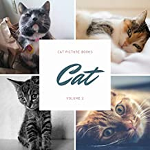 Cat (Cat Picture Books Book 2)