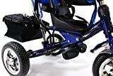 4in1 Lexx Trike Classic Smart Kids Tricycle 3 Wheel Bike Removable Handle & Canopy NEW BLUE