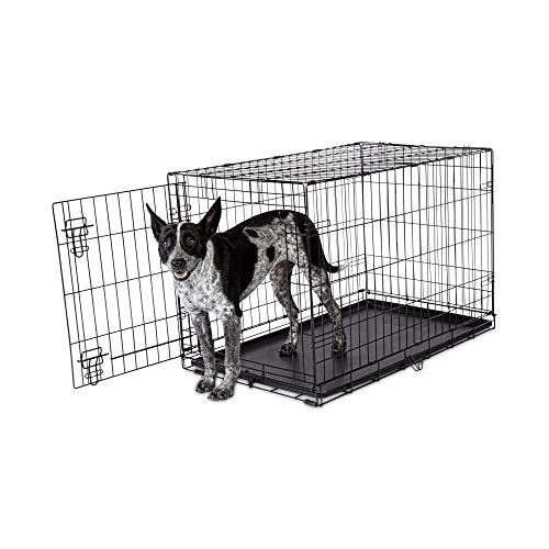 Animaze 1-Door Folding Dog Crate, 36.5