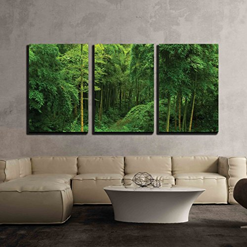 wall26 - 3 Piece Canvas Wall Art - Hidden Path in a Bamboo Forest - Modern Home Decor Stretched and Framed Ready to Hang - 24