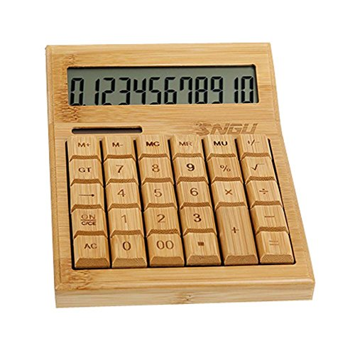 Bamboo Style Solar Calculator Business Creative Financial Calculator,A1 by DRAGON SONIC