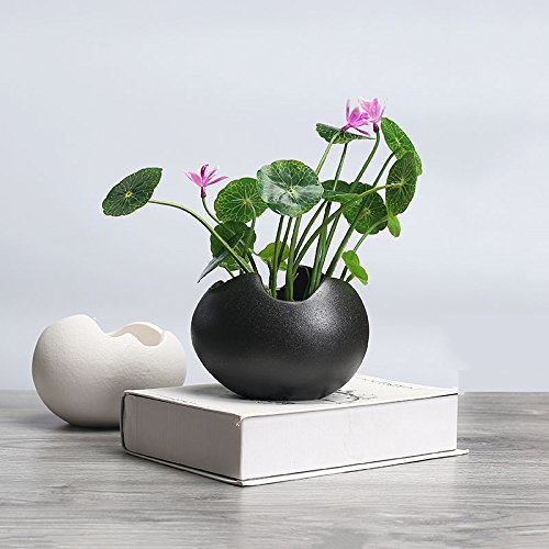 - wish you have a nice day 5.2inch Egg Shaped Modern Black Ceramic Succulent Planter Pots for Office House Balcony Landscape Creative Decorative