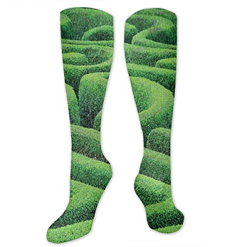 Compression Socks,Green Plant Maze Growth Ecology And Nature Theme Labyrinth Landscape Outdoors City Park (Maze Runner Costume)