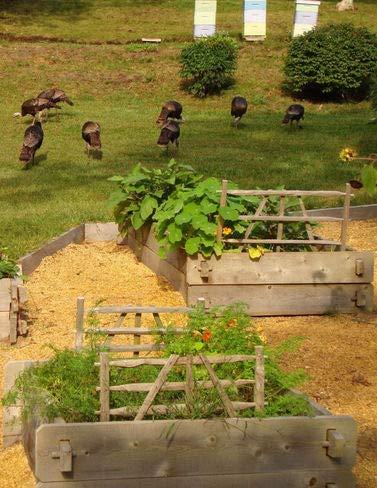 Farmstead Cedar Raised Garden Bed, 4ft x 8ft