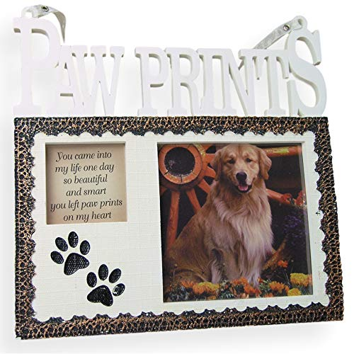 BANBERRY DESIGNS Pet Memorial Picture Frame Plaque - Resin Frame with Photo Opening and Loving Message Paw Prints On My Heart - Design That Goes with Any Decor - 7 Inch