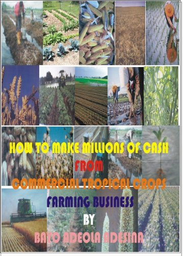 FULL HOW TO MAKE MILLIONS OF CASH FROM TROPICAL COMMERCIAL CROP FARMING BUSINESS. variety detectar MULTI llueve revealed