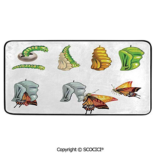 (Rectangular Area Rug Super Soft Living Room Bedroom Carpet Rectangle Mat, Black Edging, Washable,Butterflies,Illustration of Stages with Cocoon Life Cycle Nature,39