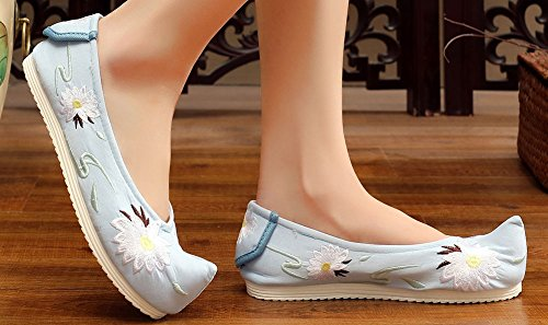 AvaCostume Womens Rubber Sole Begonia Flower Embroidered Flat Shoes Blue fZfHYTQ2E