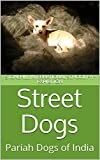 Street Dogs: Pariah Dogs of India