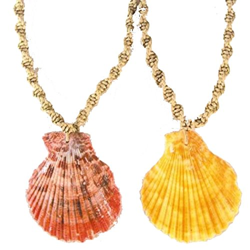 2 Pc Fan Shell Seashell Pendant on Twisted Hemp Necklace