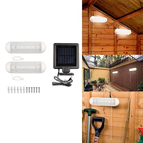 Led Shed Light in US - 6