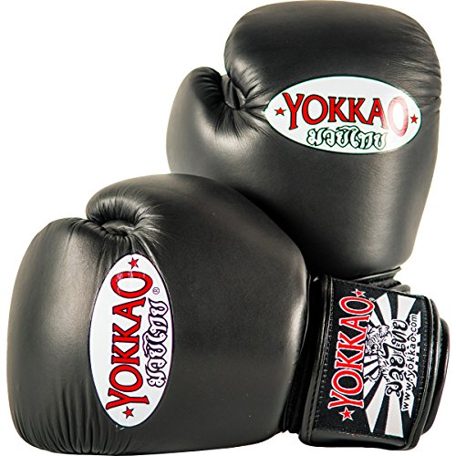 Einhaken bis Muay Thai Boxen
