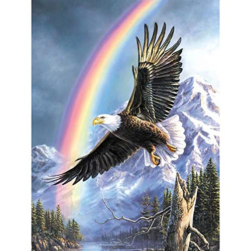 DIY Full Diamond Painting Cross Stitch kit for Adults Home Decoration Eagle Under Rainbow