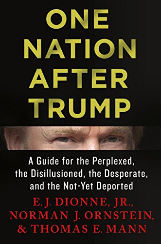 One Nation After Trump: A Guide for the Perplexed, the Disillusioned, the Desperate, and the Not-...