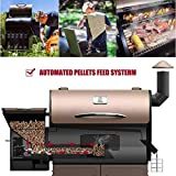 Z GRILLS Portable Party Wood Pellet BBQ Grill
