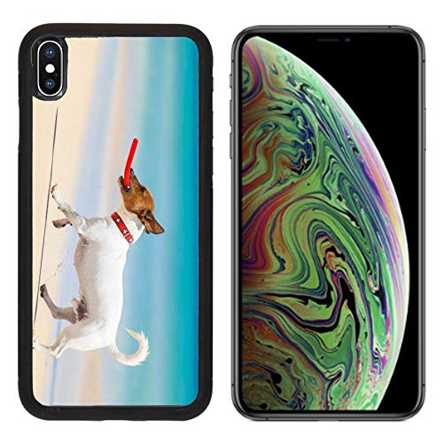 MSD Apple iPhone Xs MAX Case Aluminum Backplate Bumper Snap Case Image ID 28835611 Dog catching a red Flying disc and Running at The Beach