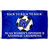 GVSU Lakers 2015 Div II Women's Soccer Champs Flag