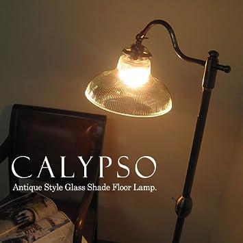Amazon calypso calypso mozeypictures Images