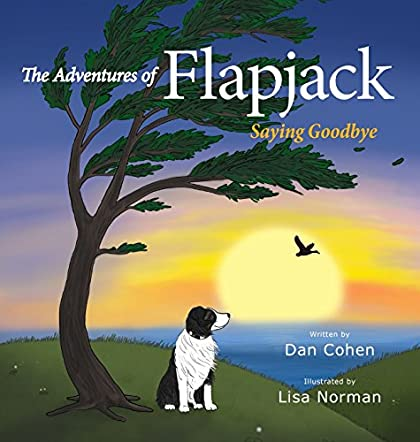 Book review of the adventures of flapjack readers favorite the adventures of flapjack voltagebd Images