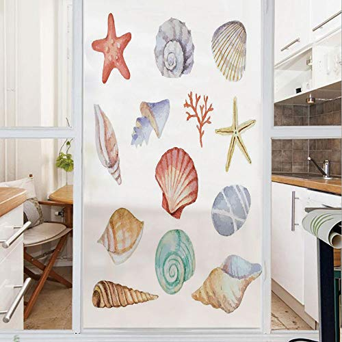 Decorative Window Film,No Glue Frosted Privacy Film,Stained Glass Door Film,Collection of Different Type Seashells Scallop Mollusk Summer Exotic Creatures Animals,for Home & Office,23.6In. by 47.2In M