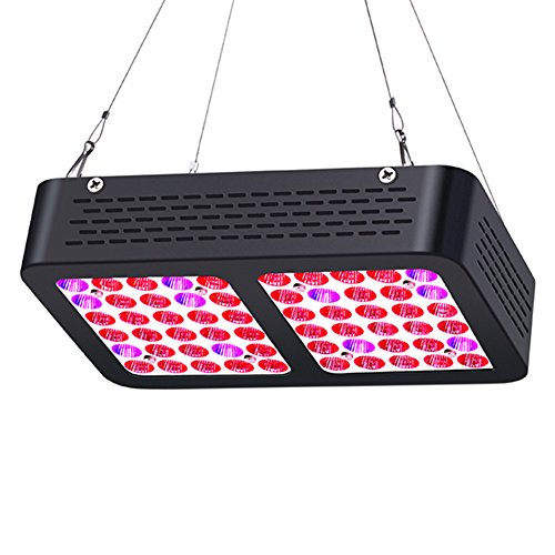 300W Led Grow Light Lumens