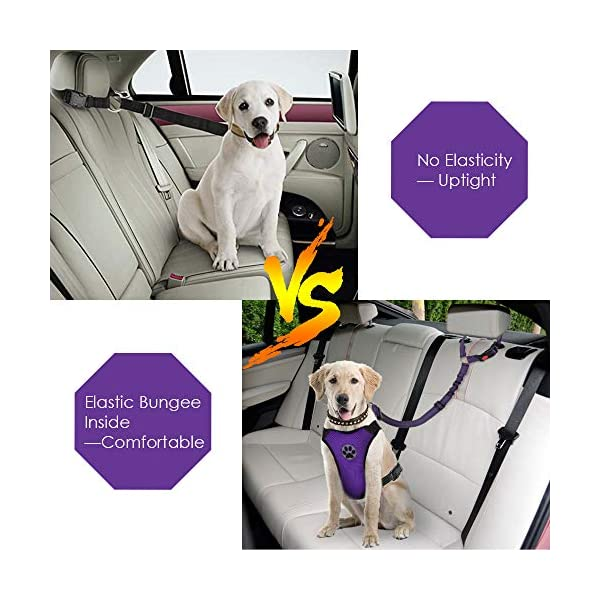 SlowTon Dog Seatbelt, 2 Pack Pet Car Seatbelt Headrest Restraint Puppy Safety Adjustable Seat Belt with Elastic Bungee and Reflective Stripe Connect with Dog Car Harness 2