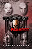 Convergent Paradox (Time Travel Through Past Lives Adventure Series) (Volume 2)