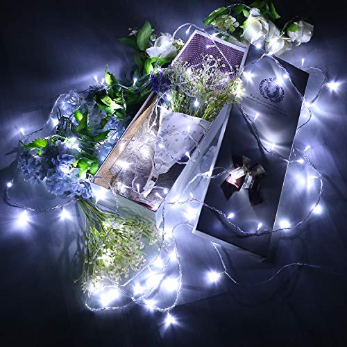 Electric Outdoor Fairy Lights in US - 7