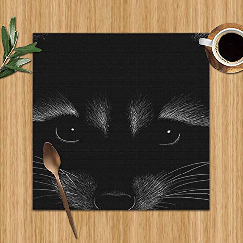 Raccoon Tshirt Design Outwear Wildlife Beauty Fashion Table Mats Placemats Set of 6, Washable PVC Dining Place Mats Heat Resistant Kitchen Mats,12 X 12 Inch from best bags