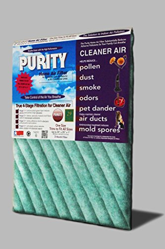 Purity Home Air Filter (Purity Furnace Filter)