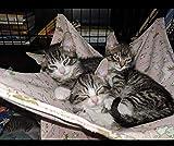 Double Layer Hammocks for Cats Bed Ferret Hammock