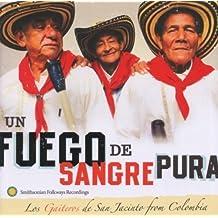 Un Fuego De Sangre Pura by Los Gaiteros (2013-05-03)